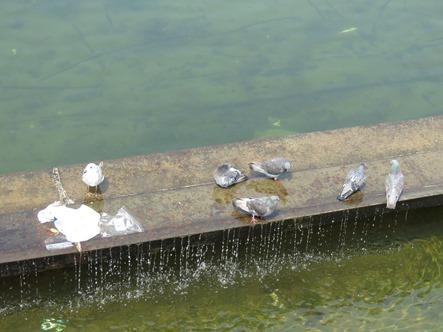 sacs plastics