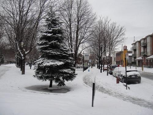 L'arrondissement de Sud-Ouest de Montréal