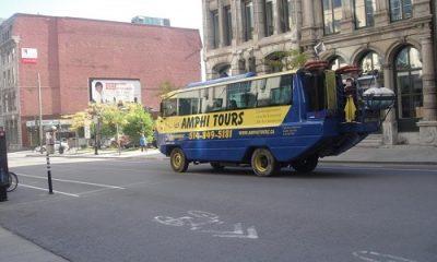 amphi-tour