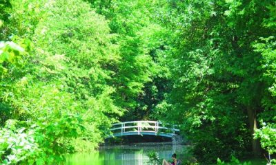 Paysage parc Jean-Drapeau