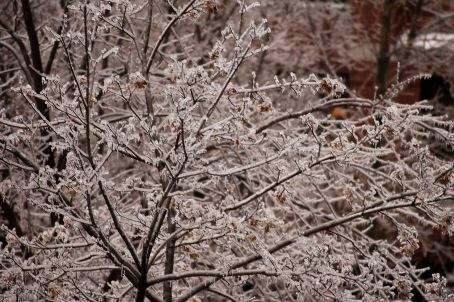 Dur hiver québécois