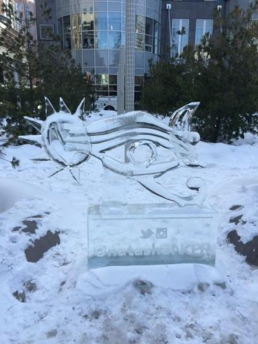 festival des sculptures de glace