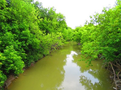 Rivière Don