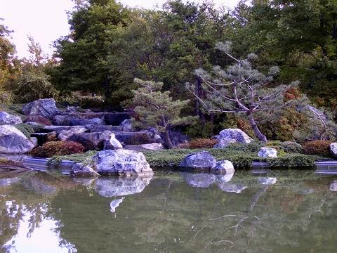 quebec, jardin chinois