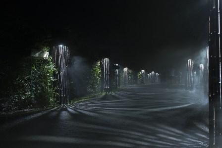 la forêt de coaticoak
