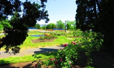 jardins de guerre