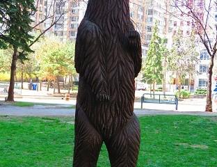 ours amérindien