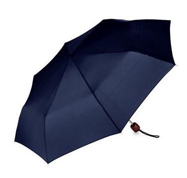 Un bon cadeau d'entreprise : Un parapluie de luxe pliant