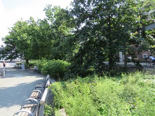 Parc Stuyvesant