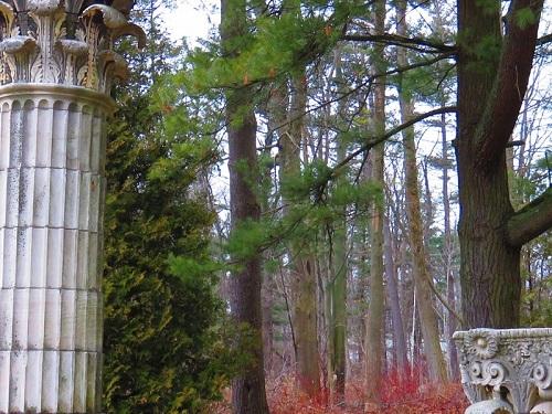 Forêt et art