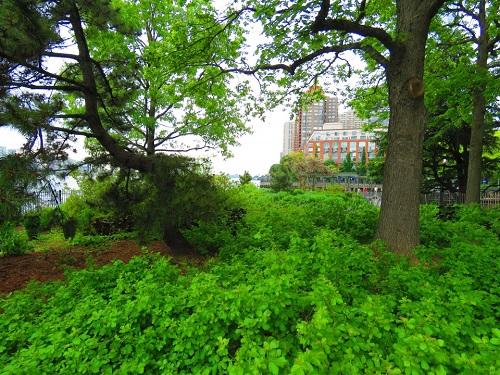 Parc riverain Hudson