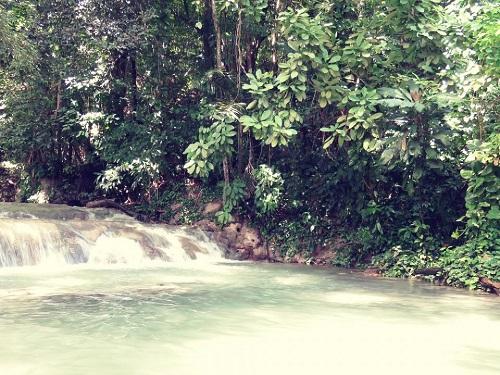 Cascades Jamaïque