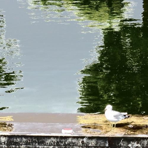 Lacs du nord - photographie par GrandQuebec.com.