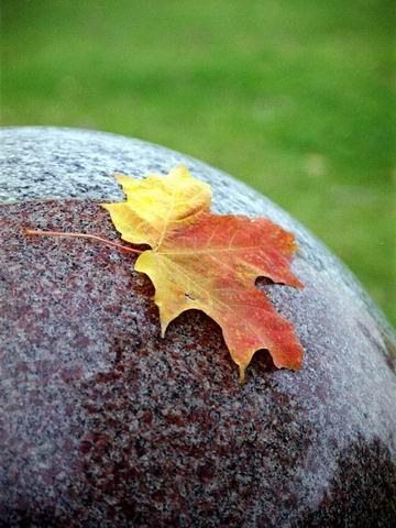 quebec automne