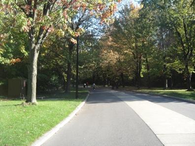 allée centrale parc angrignon