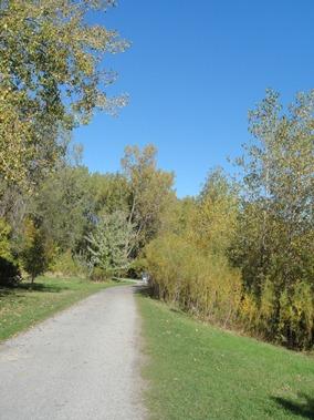 sentier le bord de l'étang Angrignon