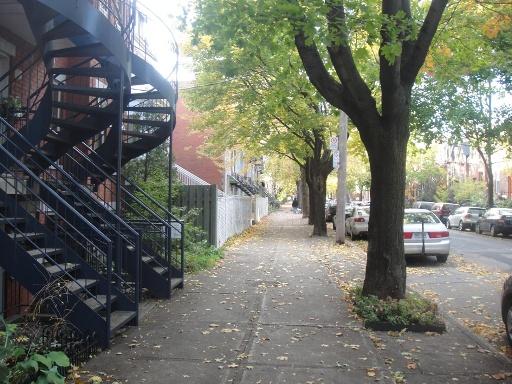 avenue laval