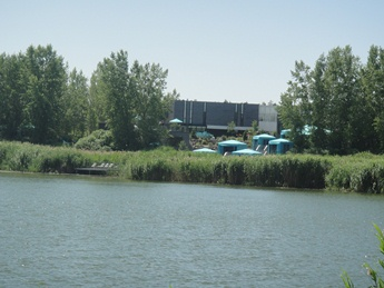 lac des battures et roseau