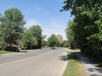 boulevard de la forêt