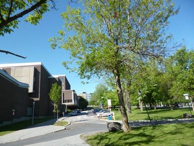 campus de l'udem