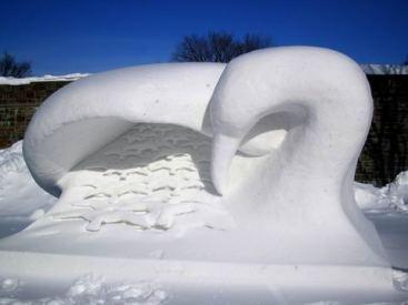 oiseau de neige dormant