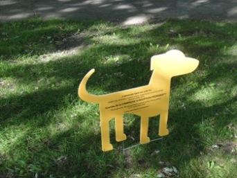 chien du parc lafontaine