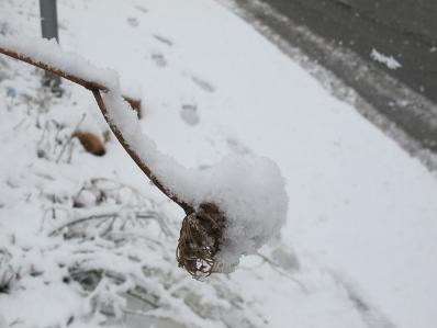 décembre en jérusalem