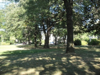 douglas towle park