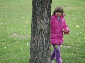 trouver un écureuil