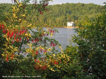 environs lac shryer