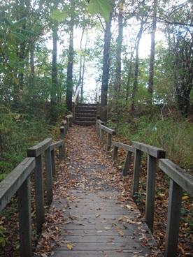 escalier ile visitation