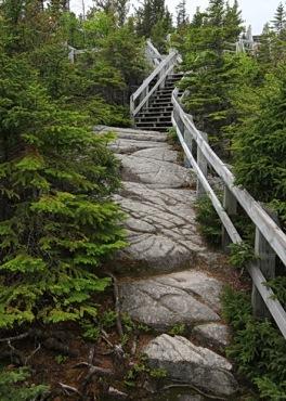 escalier du sentier de tadoussac