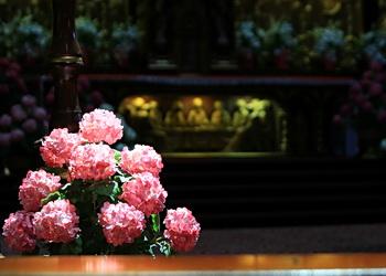 fleurs rouge dans l'église