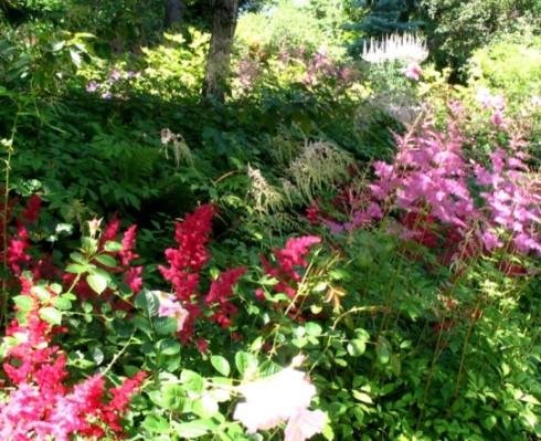 Jardin floral voyage travers le qu bec for Jardin quebec