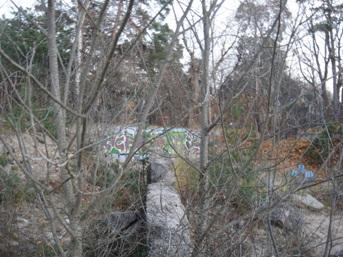 ruines de montréal graffiti