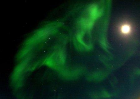 grande ourse astronomie