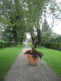 hampstead_fleurs