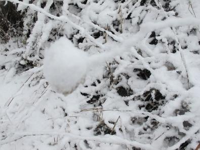hiver en israël
