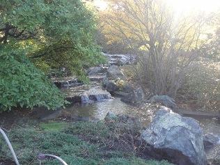 cascades du jardin japonais