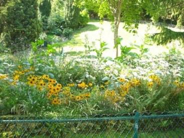 jardin de montmartre