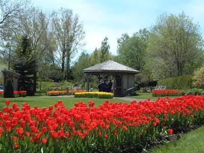 Jardin botanique van den hende voyage travers le qu bec for Jardin quebec