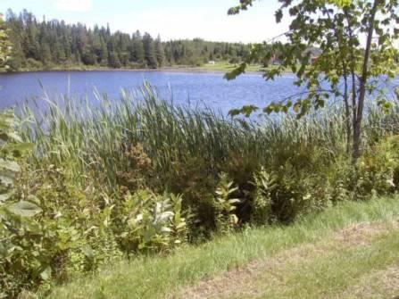 lac Jolin