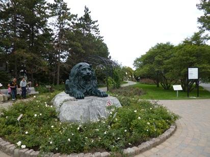 lion du jardin botanique