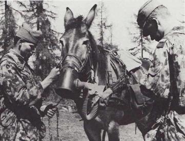 masque à gaz pour les chevaux