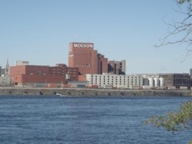 molson centre