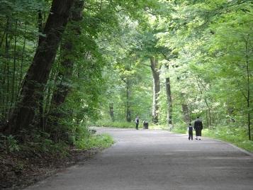 parc mont royal promenade
