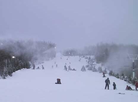 parc du Mont – Saint - Bruno