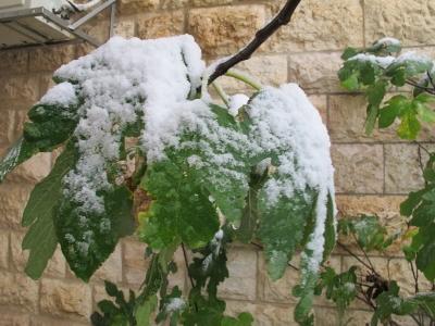 Il neige en Israël