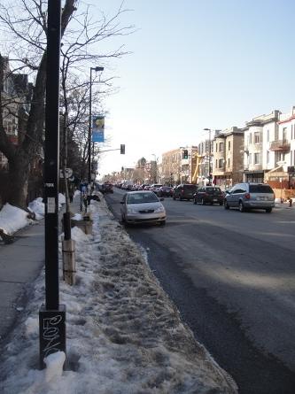 avenue parc hiver