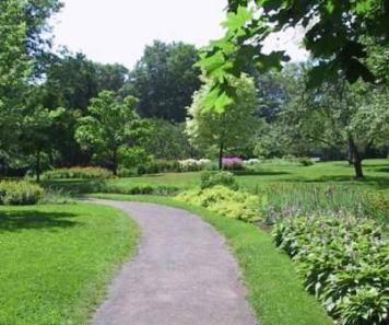 parc bois de coulonge